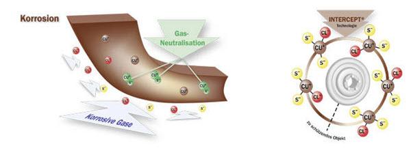 funkcja związki chemichne