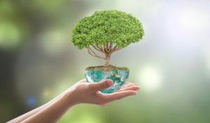Technologia przyjazna środowisku