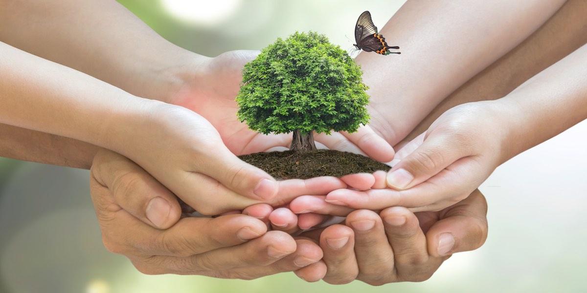 Intercept a środowisko